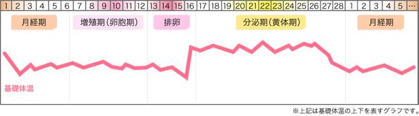 生理周期と基礎体温の変化をあらわしたグラフ
